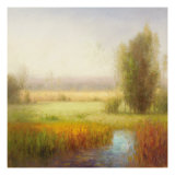 Serenity Marsh II