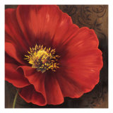 Rouge Poppies I
