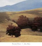 Yakima Oaks