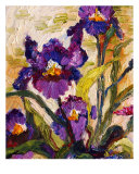 Blue Purple Bearded Irises Oil Painting