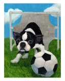 Boston Terrier Soccer Goalie On Guard