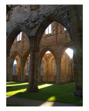 Tintern Abbey Arches-1