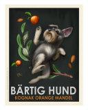 Bartig Hund - Schnauzer Reproduction d'art par Chad Otis