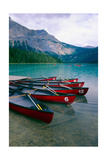 Red Canoes On Emerald Lake  British Columbia