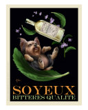 Soyeux Bitteres Qualite - Yorkie