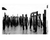 Old Ocean Dock III
