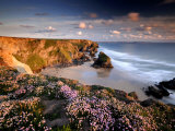Bedruthan Steps on Cornish Coast  with Flowering Thrift  Cornwall  UK