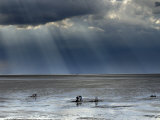 The Wash  Norfolk  Beach Landscape with Storm Clouds and Bait Diggers  UK