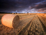 Round Straw Bales and Stormy Morning Sky  Near Bradworthy  Devon  Uk September 2008