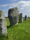 Standing Stones in the Menec Alignment at Carnac  Brittany  France