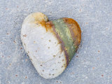 Heart-Shaped Pebble  Scotland  UK