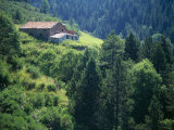 Old Farmhouse on Steep Hillside in Tregura  Ripolles  Catalonia Pyrenees  Spain