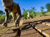Woman Making Bricks with Mud for Traditional Building Construction  Sambava  North Madagascar