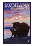 Montana - Big Sky Country - Bear and Cub  c2008