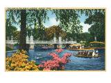 Boston  Massachusetts - View of Swan Boats in the Public Gardens Lake  c1937