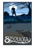Sequoia Nat'l Park - Bigfoot - Lp Poster  c2009