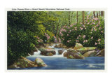 Great Smoky Mts Nat'l Park  Tn - Scenic View of Little Pigeon River  c1936