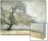 Tree in Field of Flowers Acrylique par Mia Friedrich