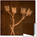 Four Dried Blossoms