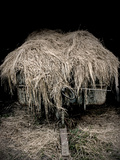 Hay Covered Wagon