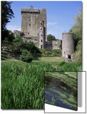 Blarney Castle  County Cork  Munster  Eire (Republic of Ireland)