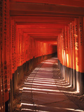 Fushimi-Inari Taisha Shrine  Japan