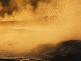 Spasm Geyser Erupting at Sunset  Lower Geyser Basin  Yellowstone NP Wy