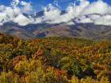 Autumn View of the Southern Appalachian Mountains from the Blue Ridge Parkway  North Carolina  USA
