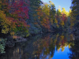 Autumn Colors Reflected on the Linville River  Pisgah National Forest  North Carolina  USA