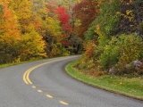 Blue Ridge Parkway Winding Through Autumn Colors  Pisgah National Forest  North Carolina  USA