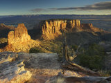 Sunrise Warms the Sandstone Pillars and Walls of Colorado National Monument  Colorado  USA