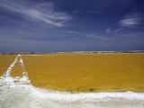 Salt Crusted Shoreline of a Salt Pan Near Lac Bay  Bonaire  Netherlands Antilles  Caribbean