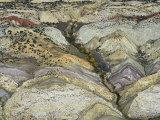 Aerial View of Folded Strata and a Dinosaur Quarry  Dinosaur National Monument  Colorado  USA