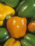 Valencia' Sweet Peppers (Capsicum Annuum)