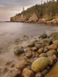 Dawn at Otter Cliffs  Acadia National Park  Maine