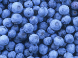 Blueberries  Vaccinium Corymbosum