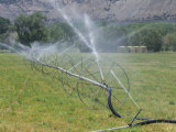 Irrigation Is Required for Agriculture in the Dry Climate of Western Colorado