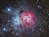 The Trifid Nebula in Sagittarius, M20 Papier Photo par Robert Gendler