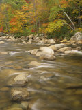 Autumn Colors Along the Swift River  White Mountains National Forest  New Hampshire  USA
