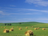 Hay Bales and Rolling Hills of Palouse Farm Country in Eastern Washington  USA