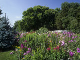 Flower Garden  Broadmore Gardens  Kentucky  USA