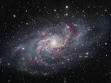 Spiral Galaxy in Triangulum  M33