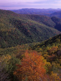 Otter Creek Wilderness from Table Rock  Monongahela National Forest  West Virginia  USA