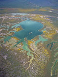 Aerial View of the Carrizo Plain and the Wetlands of Soda Lake  California  USA
