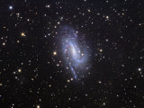 Ngc 925 Spiral Galaxy in Triangulum