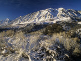 Winter View of Wheeler Crest from Owens Valley  Eastern Sierra Nevada Mountains  California  USA