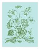 Spring Cyclamen I