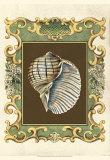 Mermaid's Shells I