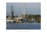 Safe Harbor V