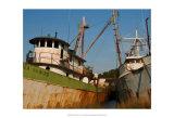 Safe Harbor IV